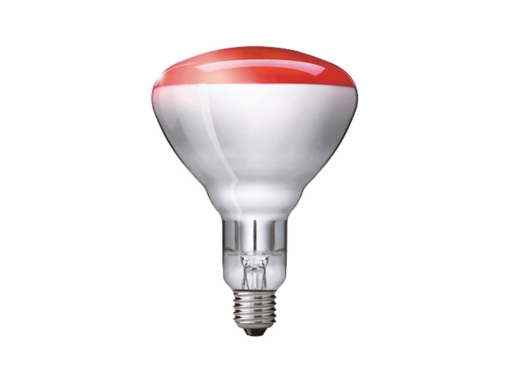 LAMP INCANDES INFRARROJ ROJA 250W/E27